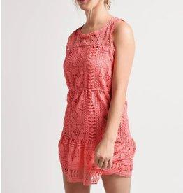 BB Dakota Sugar Coral Lace Dress