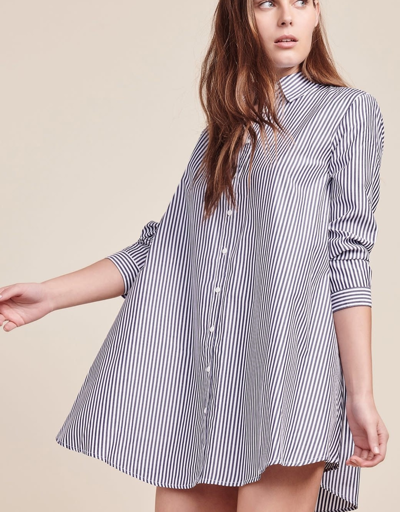 BB Dakota Stripe Shirtdress
