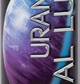 WET Wet Uranus Anal Lubricant Silicone Based 9oz