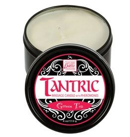 CALEXOTIC Tantric Soy Massage Candle with Pheromones Green Tea