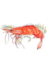Marissa Amor Spot Shrimp in Kelp | Marissa Amor
