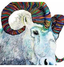 Katie Sevigny Dall Sheep