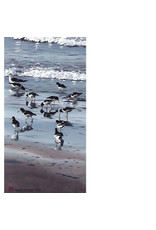 "Byron Birdsall Byron Birdsall ""Wave Runners"" art print"