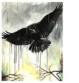 Katie Sevigny Raining Raven