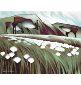 Nathalie Parenteau Arctic Cotton Grass
