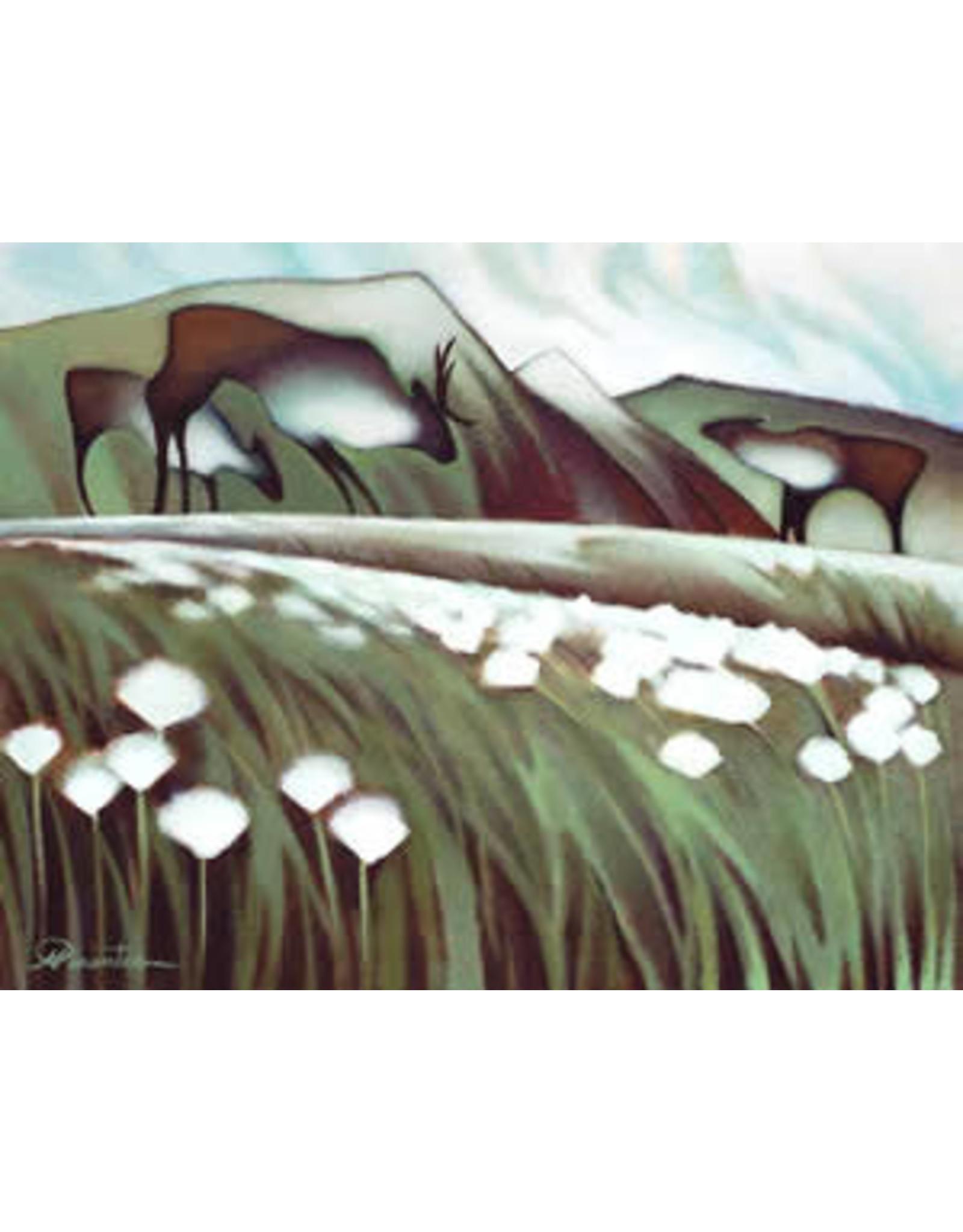 Nathalie Parenteau Arctic Cotton (art card) | Nathalie Parenteau