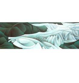 Nathalie Parenteau Mendenhall Glacier/Glacial Ice