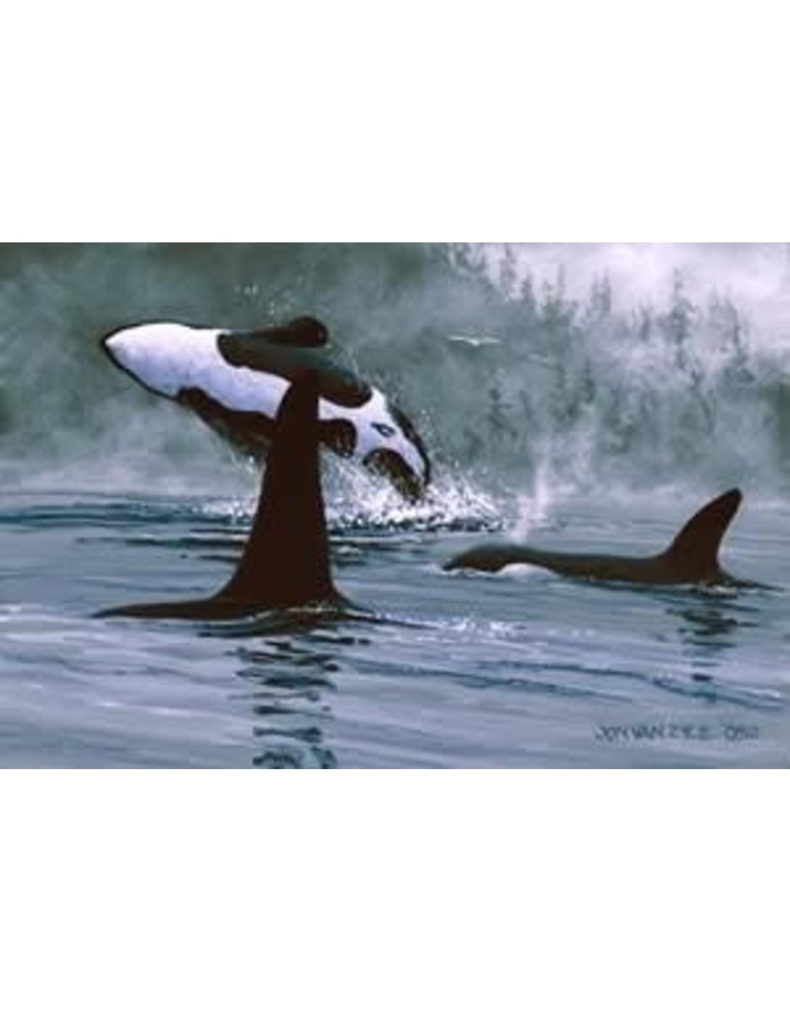 Jon Van Zyle Orcas | Jon Van Zyle