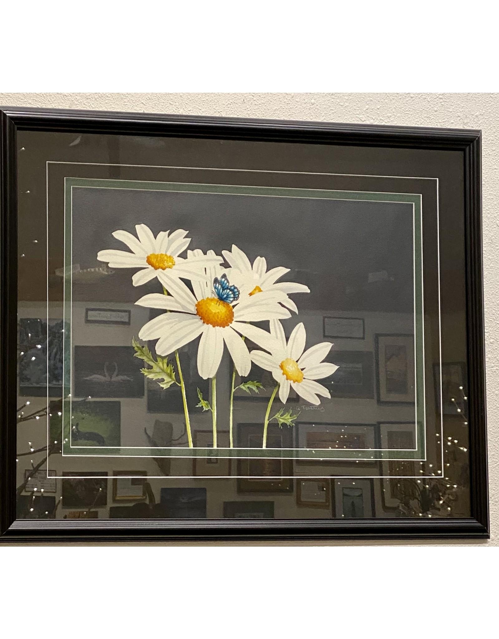 Alice Tersteeg Daisies (framed original) | Alice Tersteeg