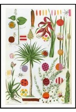 Smilow + Mathiesen Red Palm Tea Towel | Pamela Smilow