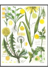 Smilow + Mathiesen Yellow Dandelion Tea Towel   Pamela Smilow