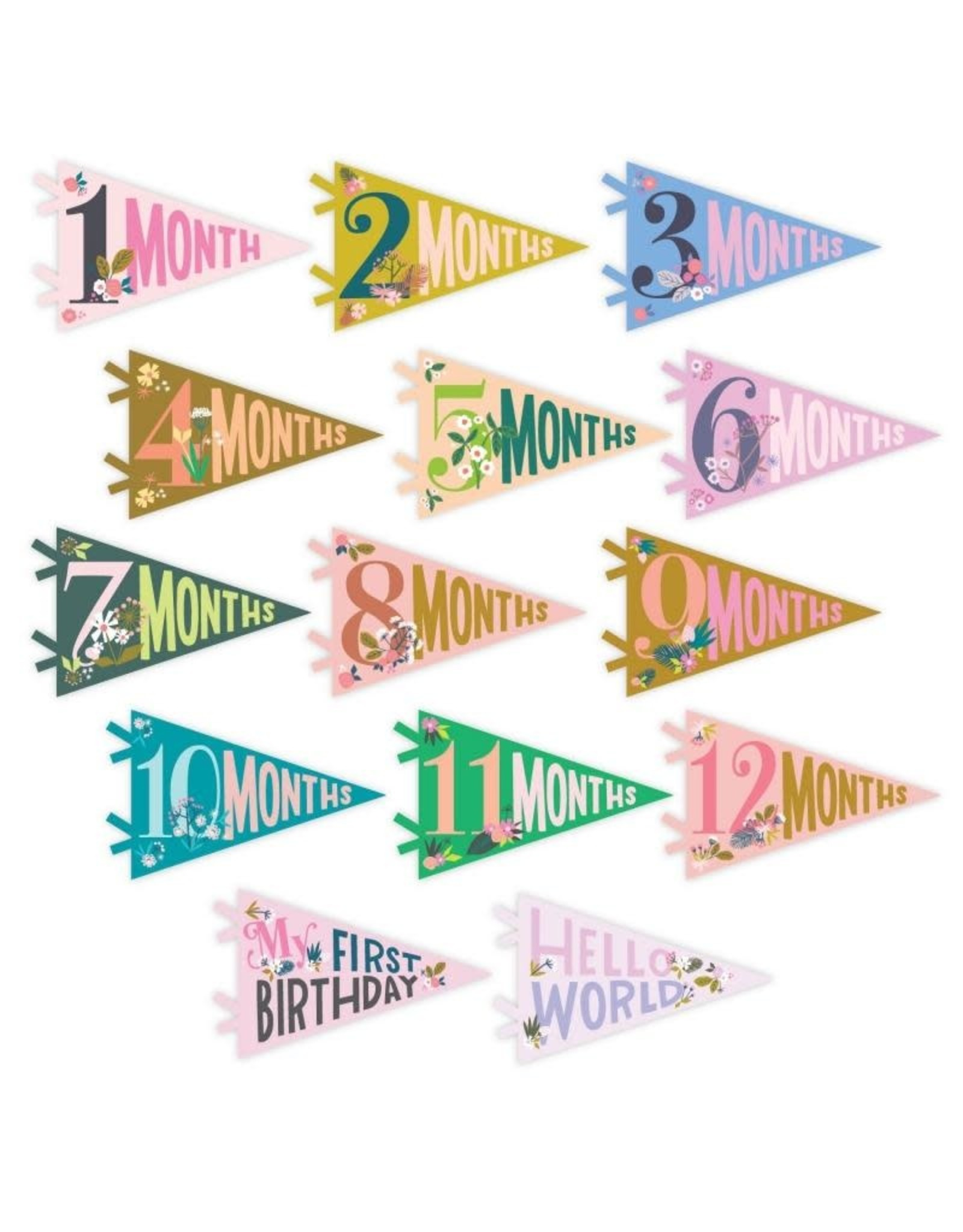 Lucy Darling Little Artist Milestone Pennant | Lucy Darling