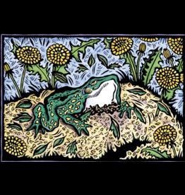 Evon Zerbetz Frog's First Look at Spring