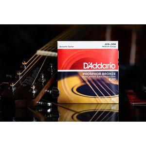 D'Addario D'Addario Phosphor Bronze Acoustic Guitar Strings Medium 13-56