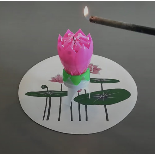 Lotus Candles Happy Birthday Musical Lotus Candle