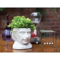 Albert Einstein Planter
