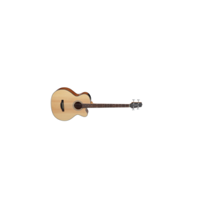 Takamine Takamine GB30CE Acoustic Bass - Natural