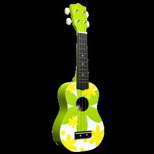 Amahi Amahi Green Flower - Soprano Ukulele