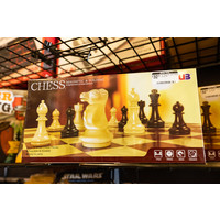 """14"""" Magnetic and Folding Chess Set"""