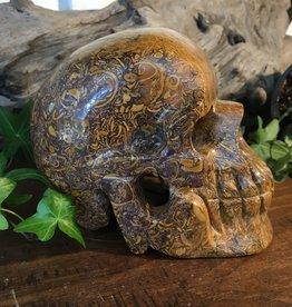Fossilized Jasper Skull