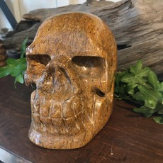Fossilized Jasper Skull