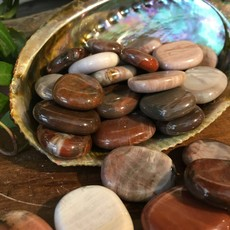 Petrified Wood Mini Palm Stone