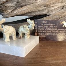 Elephant Spirit Animal