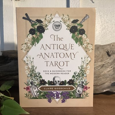 The Antique Anatomy Tarot
