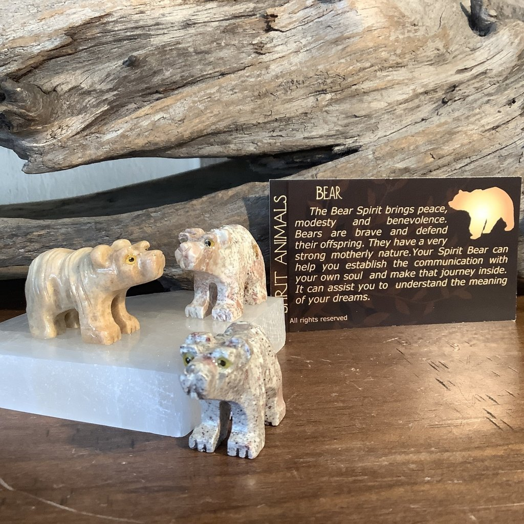 Bear Spirit Animals
