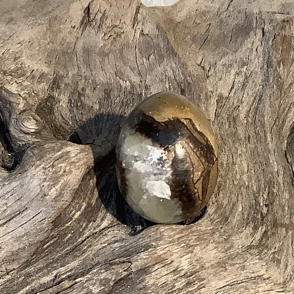 Septarian Nodule Egg