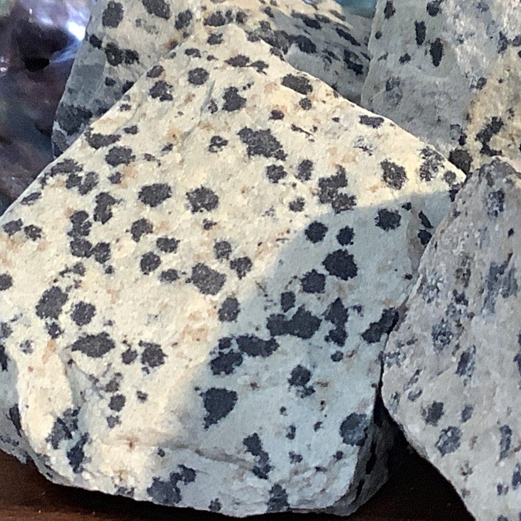 Dalmatian Stone Raw