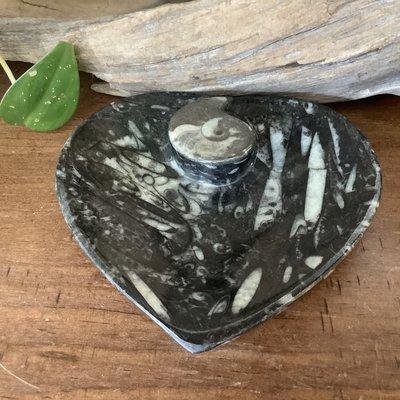 Fossil Heart Dish