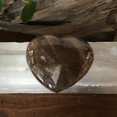 Petrified Wood Heart Large