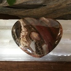 Petrified Wood Heart