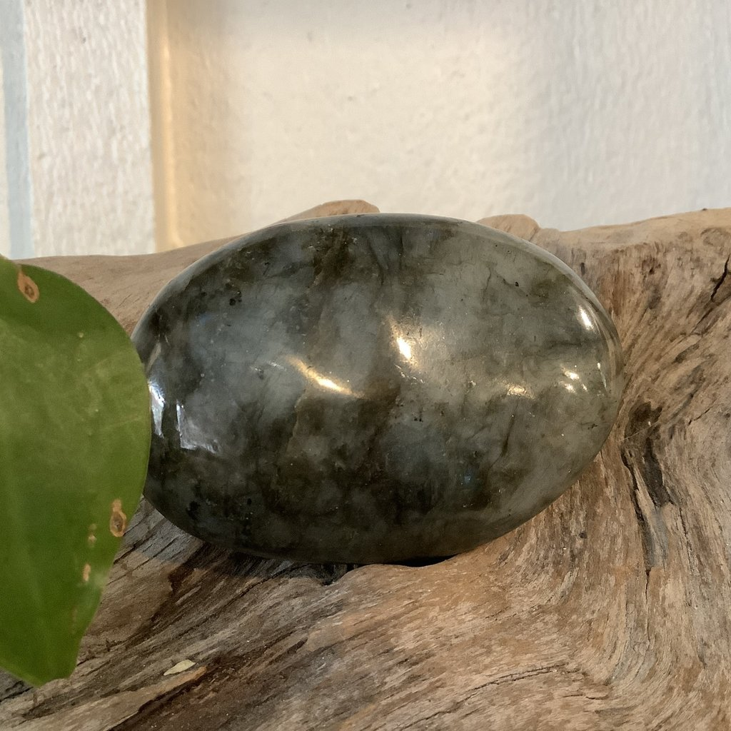 Large Labradorite Palm