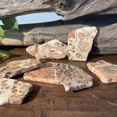 Leopardskin Jasper slab
