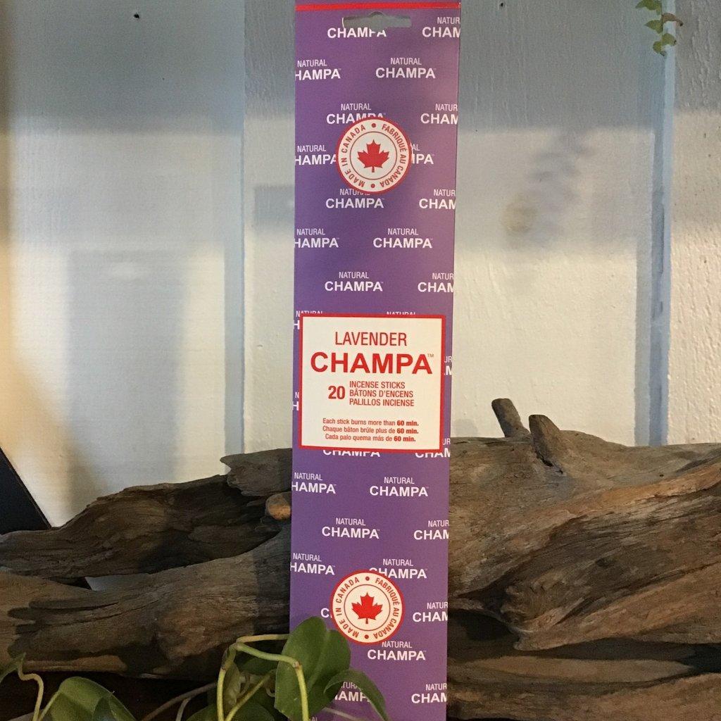 Lavender Champa