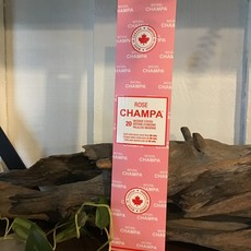 Rose Champa