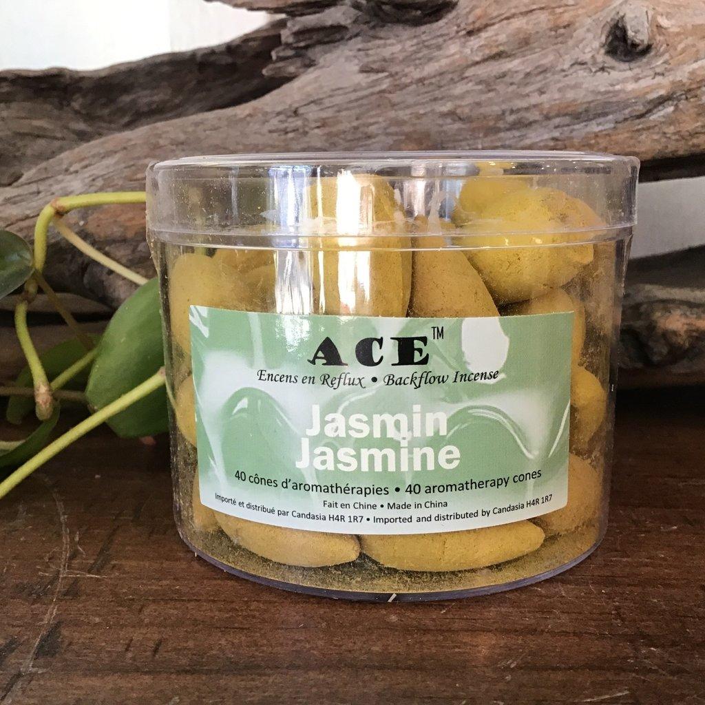 Jasmine Backflow Cones