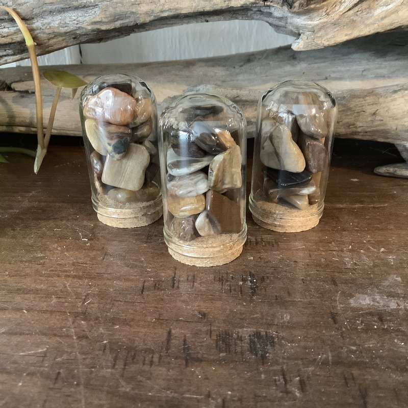 Petrified Wood Mini Jar