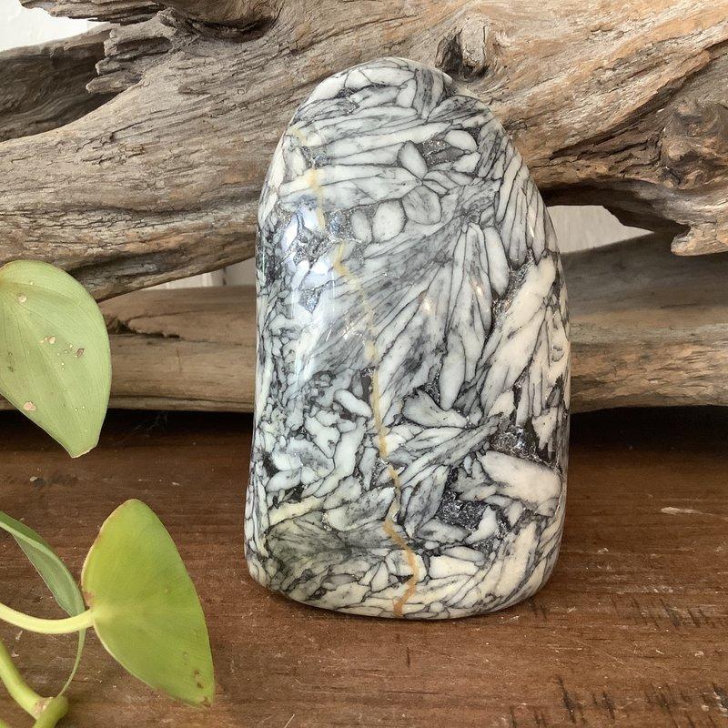 Pinolite Free Form