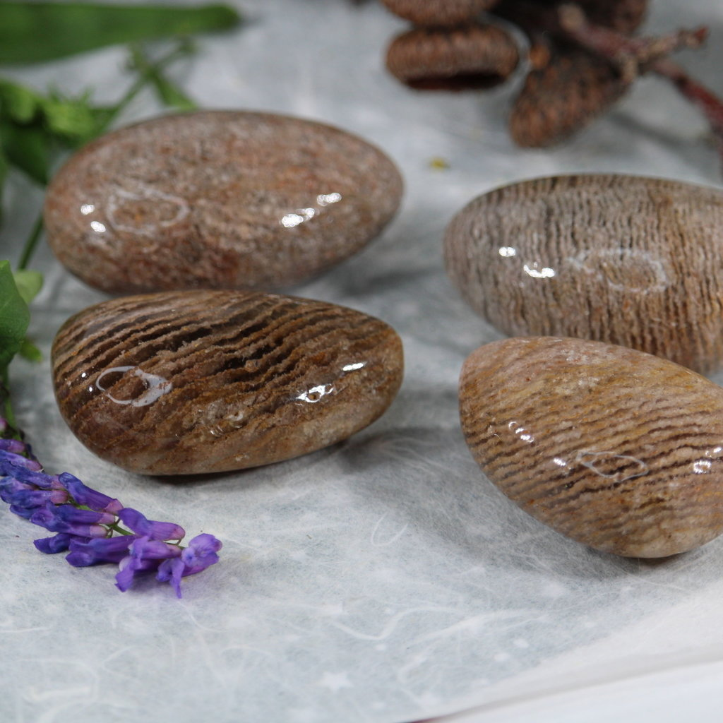 Lodolite Palm Stone