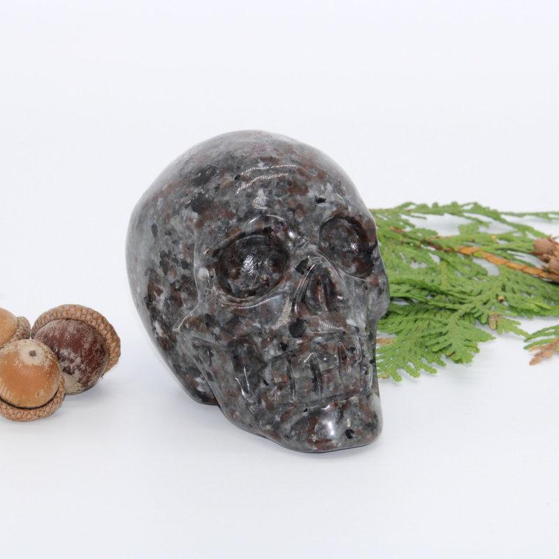 Yooperlite Skull