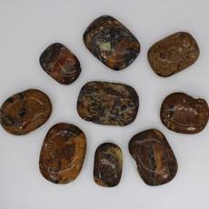 Apatite in Jasper Palm Stone