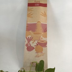 Flore Incense Amber