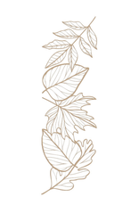 spellbinders Autumn Leaf Border (Glimmer Hot Foil Plate)