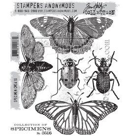 Tim Holtz Specimen: Cling Stamp