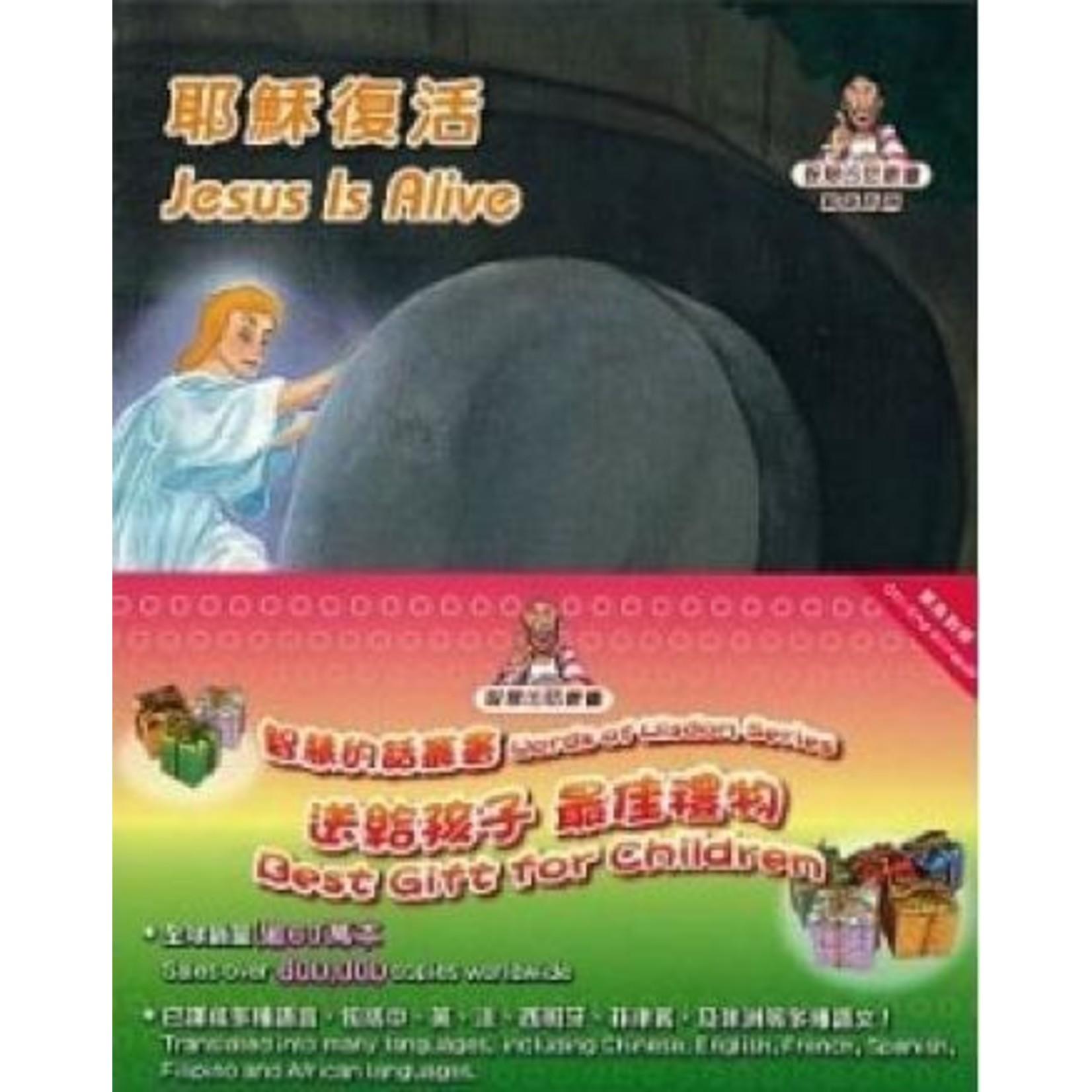 香港聖經公會 Hong Kong Bible Society 智慧的話叢書(繁英對照)(15本套裝) Words of Wisdom Series Gift Set (15 books in 1 set)