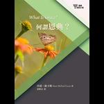 改革宗 Reformation Translation Fellowship Press 基要信仰小冊系列:《何謂恩典?》