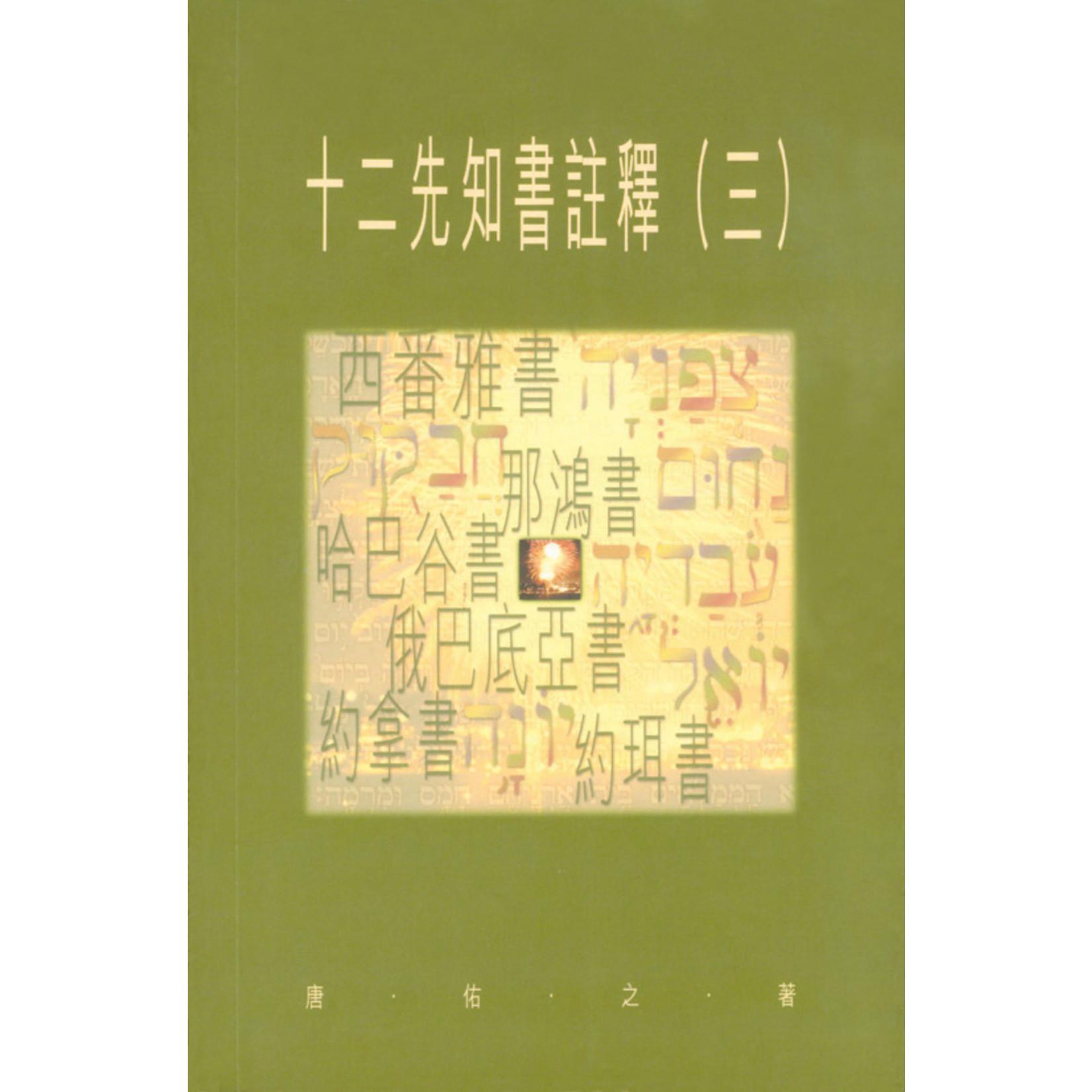 天道書樓 Tien Dao Publishing House 聖經研究叢書:十二先知書註釋(三)西番雅書、那鴻書、哈巴谷書、俄巴底亞書、約拿書、約珥書